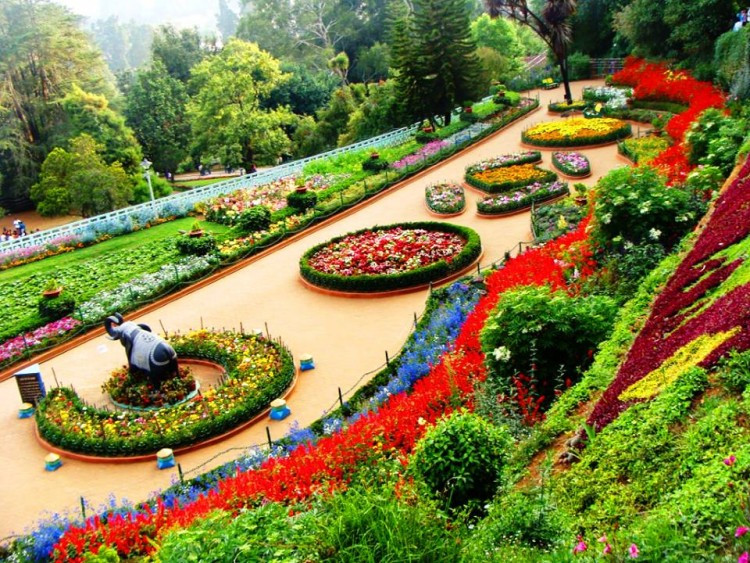 Things to do Before Planning HoneyMoon in Ooty.